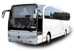 sacar el carnet de autobús en bizkaia